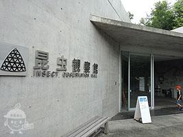 昆虫観察館入口(3F)