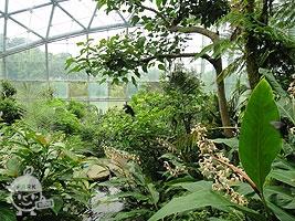昆虫ふれあい温室