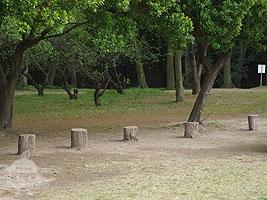 木製の遊具