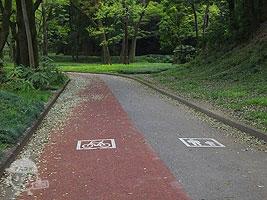 歩行者道路と自転車道