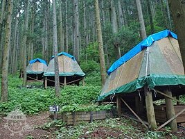 常設キャンプ場