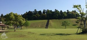 草スキー場と芝生