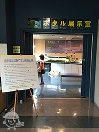 ホタル展示室