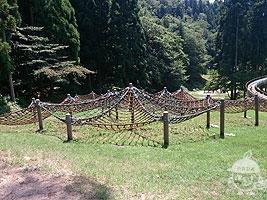 森の遊び場