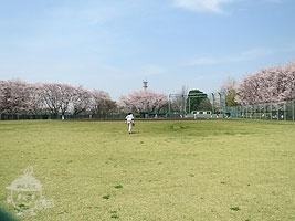 市営野球場