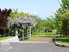 左岸側の公園入口