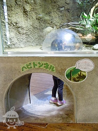 ヘビトンネル