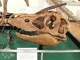 恐竜化石の復元
