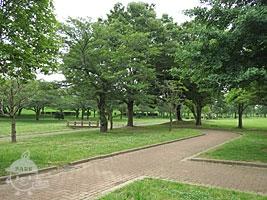 木陰の多いエリア