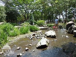 河原遊び場