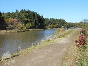 柏崎・夢の森公園