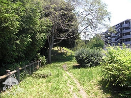 徳丸ヶ丘緑地地区