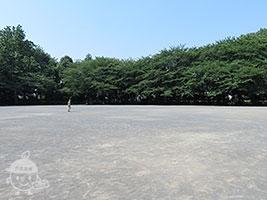 大きな広場