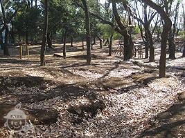 羽根木プレーパーク