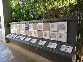 アジアゾウのクイズ