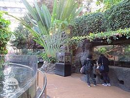 両生爬虫類館