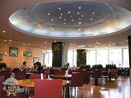 【地球館中2階】レストラン ムーセイオン