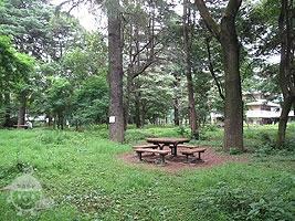 森の入口広場