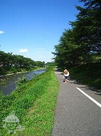 南浅川 川沿い