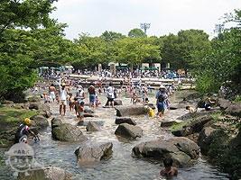 水遊びの池