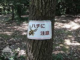 ハチに注意