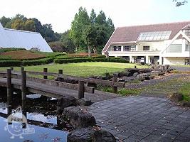 親水池・ふるさとの庭