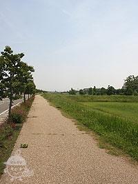 遊歩道(Bコース)