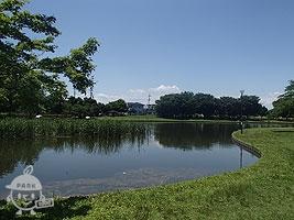 鶴谷沼(釣り池)