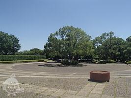 中央広場前のロータリー