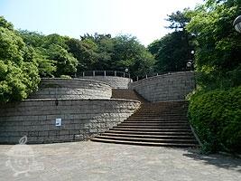 花の丘へと続く階段