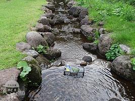 小さな鮭川