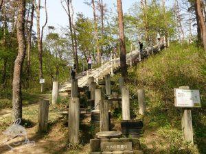宮城県県民の森