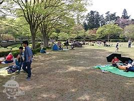 中央記念館前の芝生