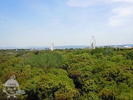 展望タワーからの眺め