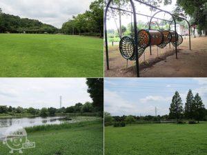 さぎ山記念公園・見沼自然公園
