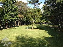芝生の広場(福島ふるさとの森)