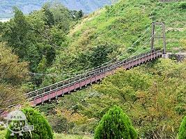 森の吊り橋