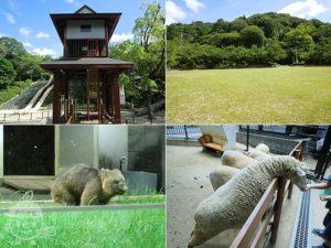 五月山公園・五月山動物園