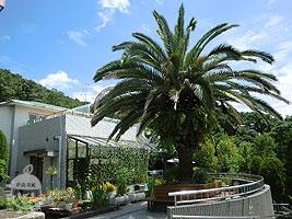 池田市緑のセンター