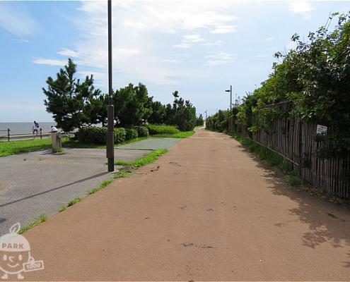 高洲海岸沿い緑道