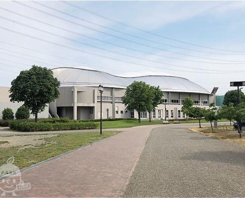 シルクドーム(体育館)