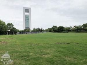 霞港公園、芝生広場