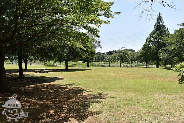 北柏ふるさと公園・芝生広場