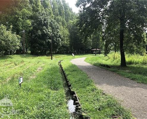 自然観察園・散策路
