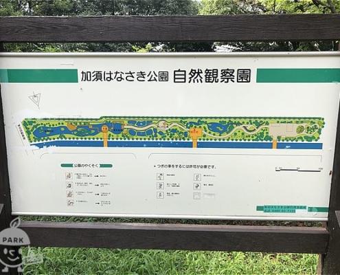 自然観察園案内図