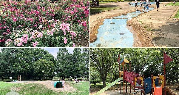 伊奈町制施行記念公園