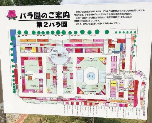 バラ園案内図