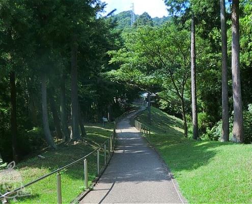 風の丘から宮ヶ瀬ダムへ続く道