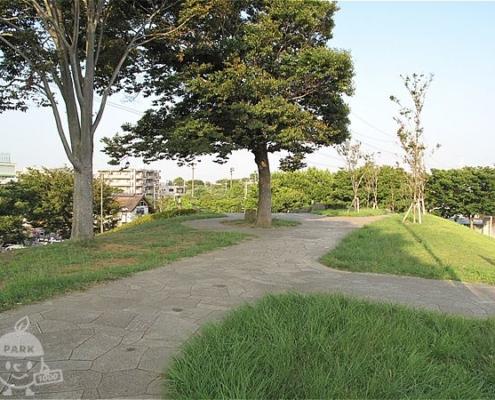 江戸川富士