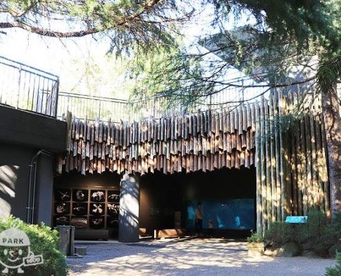ペンギンやオットセイの展示